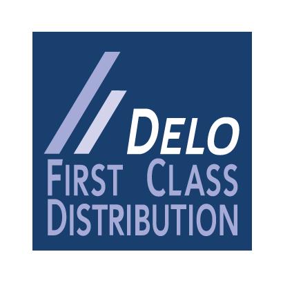 DELO Computer GmbH