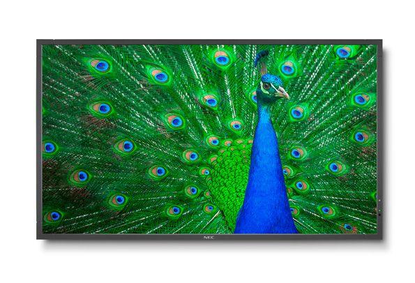 NEC Large Format Display C651Q